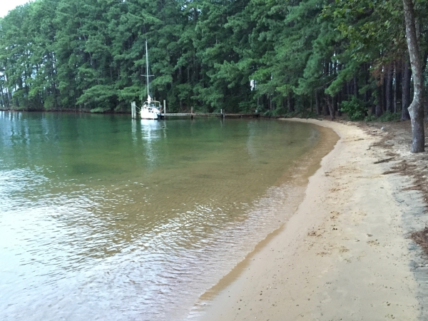 Christmas Tree Island on Smith Mountain Lake, Union Hall, VA with Private Cove, Dock, and Beach